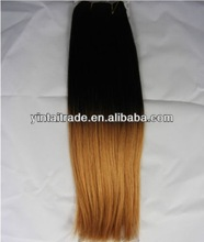 Ombre Two Tone Human Hair Extensions 100% Remy Dip Dyed Weave Full Head Colour #1b to #27