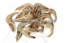 Long lasting bio product as shrimp feed additive