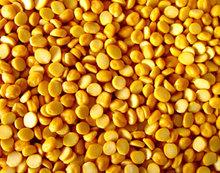 Bengal grams