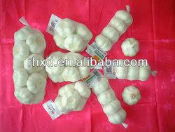 garlic price in china 2013
