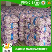 China Natural Garlic Price
