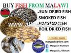 mangochi fishmart fish