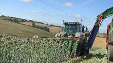 Onion Seed Harvester