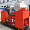 Water Cooled 250 kw Biomass Generator With CHP