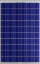 230W ploy photovoltaic Solar panel with good price