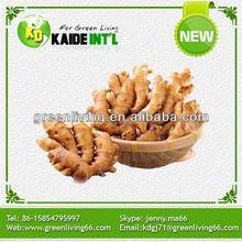 supply fresh ginger for export (80-150g,150g,200g&up)/best quality