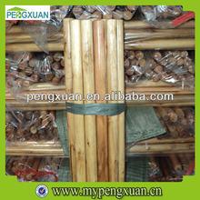 Varnished Wooden Handles/Wooden Stick, Mop Handles/Mop Stick,Broom Handles/Broom Stick with italian screw