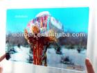 Photo Printing on Glass