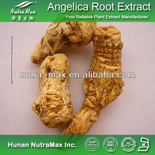 2014 China Manufacturer - Dong Quai/Angelica Root P.E. 4:1~20:1