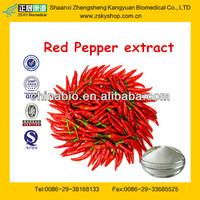 Food Grade Synthetic Capsaicin Extract