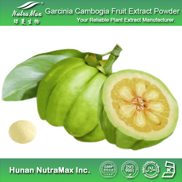 Garcinia Cambogia Extract Powder in Delhi, Delhi, India