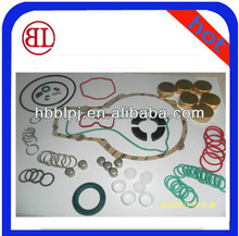 PS7100 Diesel Fuel Pump Manual Repairing /Repair Kits