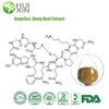 Angelica/Dong Quai Extract 1%Ligustilide 0.1% Ferulic acid