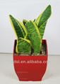 La decoración del jardín olla, de plástico planta de maceta, baratos pote de flor cuadrado