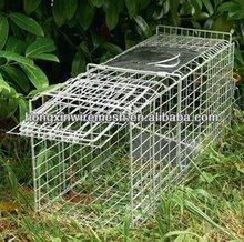 9*350.5mm Dog Kennel/Metal Dog Kennel Supplier