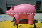 2014 giant inflatable pig