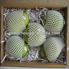 EPE mesh sleeve fruit protector
