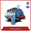 gas steam boiler manufacturer