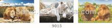 New arrivals 3d lion flipped poster wall art