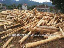 Peeled acasia round logs