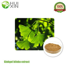 Factory price Ginkgo Biloba Extract promote radical scavenging activity