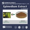 epimedium sagittatum seeds extract natural sex herb medicine