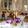 Crystal Candelabra, crystal candelabra 6 candle, rainbow crystal candelabra