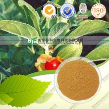 High quality ISO Ashwagandha extract 20:1 10:1 Ashwagandha extract 20:1