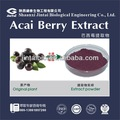 100% watersoluble polvo del extracto de la baya acai energy drink
