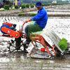 reasonable price diesel engine rice planting machine price