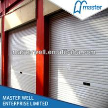 Foaming injection roller door