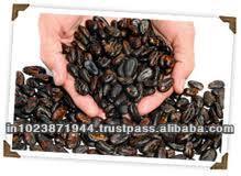 High Grade Cocoa Bean