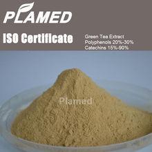 High quality organic white tea extract supplement,top quality organic white tea extract