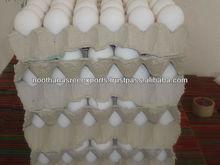 India Farm Fresh Chicken Egg