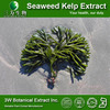 Brown Seaweed Extract Powder/Seaweed Extract oil/Fucoxanthin Color Supplement