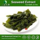 Dried Red Seaweed Extract Face Cream/Spirulina Algae Extract Powder