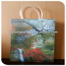 China supply custom printed plastic bags package design