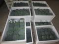صينية القرنبيط الأخضر الطازج