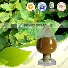 Dried Perilla Leaf Extract,Perillae Folium Extract,Folium Perillae Extract