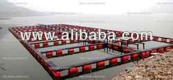 LVHD farming tilapia cage