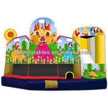 5in1 Princess bouncy castle slide (Immanuel)