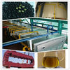 Hot popular in southeast Asia palm oil fruit processing equipment
