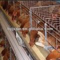 batería de jaulas para gallinas ponedoras
