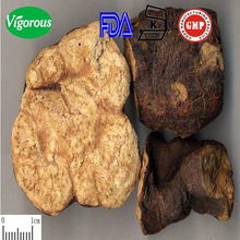 polygonum multiflorum thunb/polygonum multiflorum hair extract