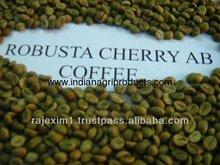 robusta chicchi di caffè verde prezzo