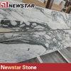 Newstar italian arabescato corchia marble slab