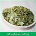 cebolinha verde desidratada
