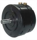 BLDC vehicle motor