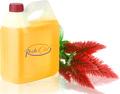 De haute qualité'amarante huile de première pression à froid