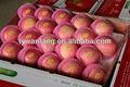 Shandong yantai manzana, rojo fresco delicioso a granel de vitaminas y minerales